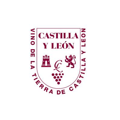 v-t-castilla-y-leon